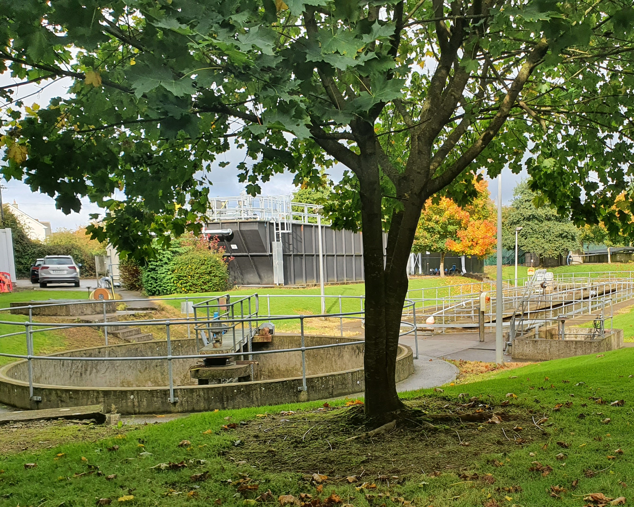 A waste water treatment plant with a tree in the foreground