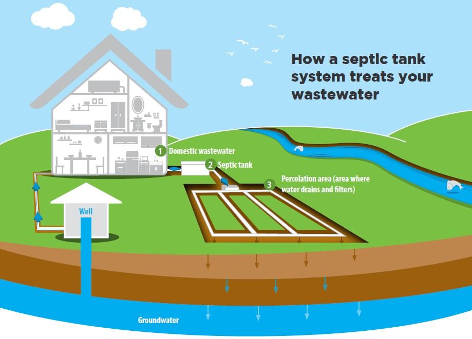 Septic tank infographic - how a tank treats water