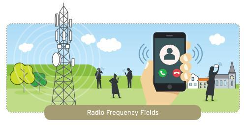 Radio Frequency Fields