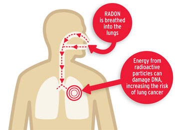 How radon can harm the lungs