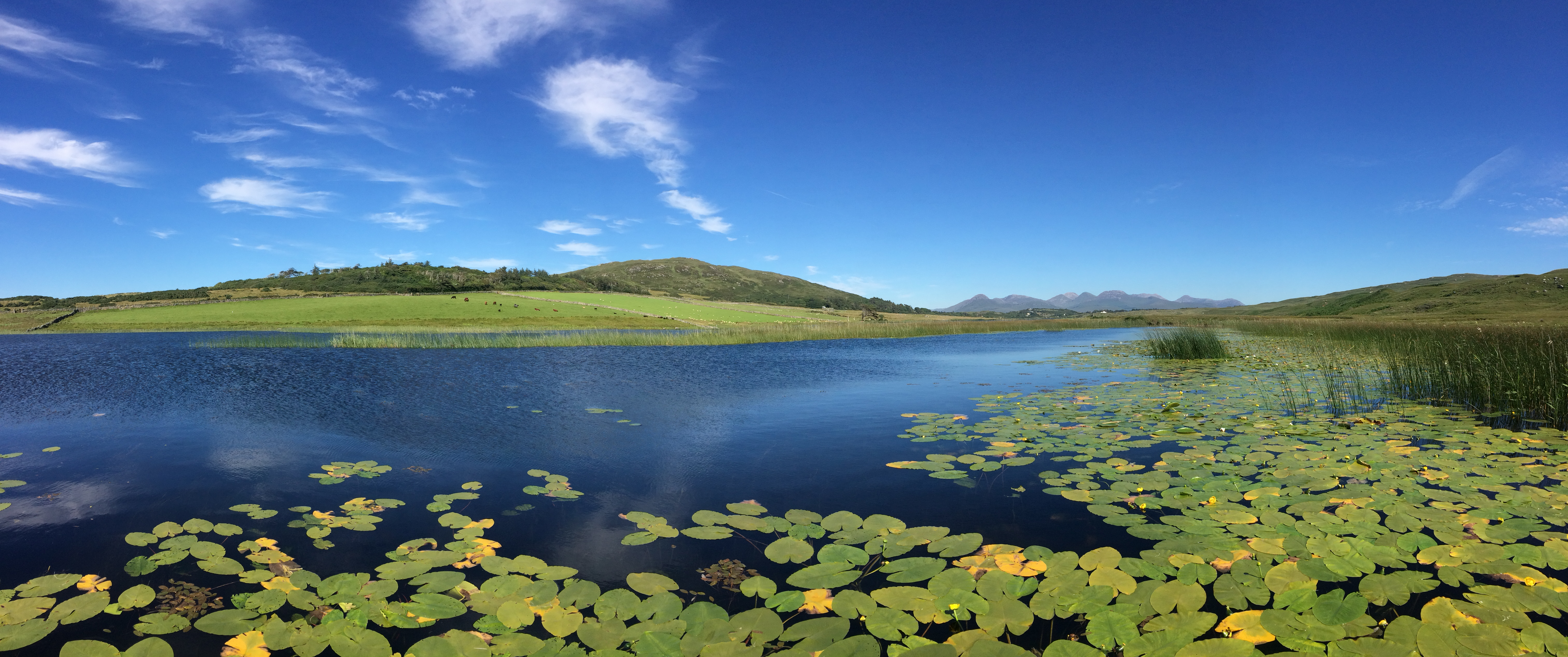 lake and  surrounding area