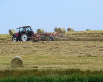 A tractor in a hay field