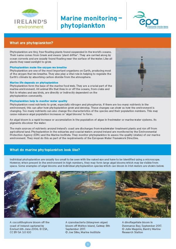 Factsheet - Marine Phytoplankton (Thumb)