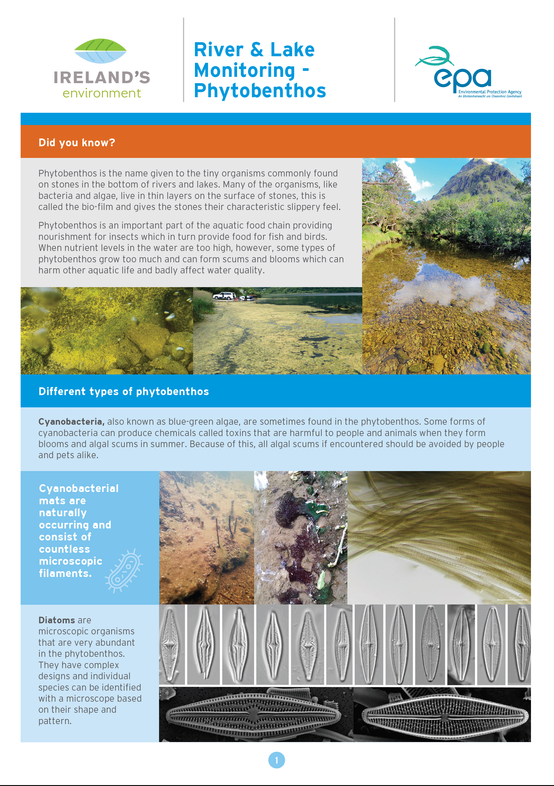 River and lake phytobenthos monitoring factsheet