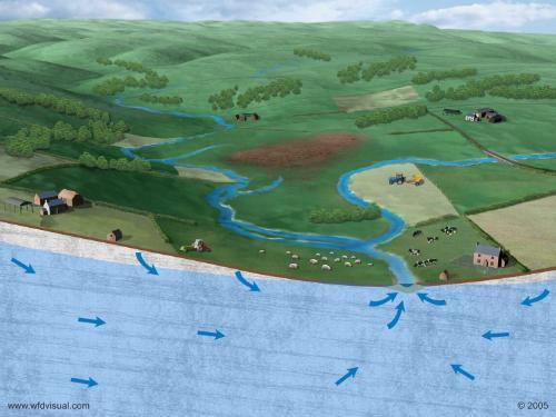 groundwater illustration