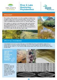 River and Lake Monitoring - Phytobenthos fact sheet cover