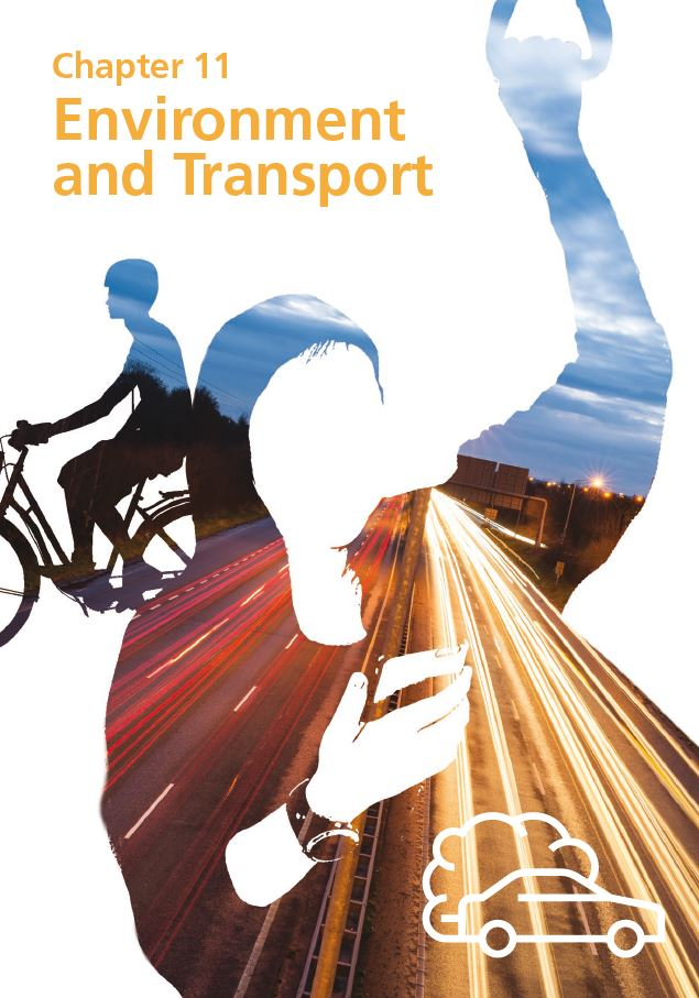 Report cover IE 2020 - Chapter 11