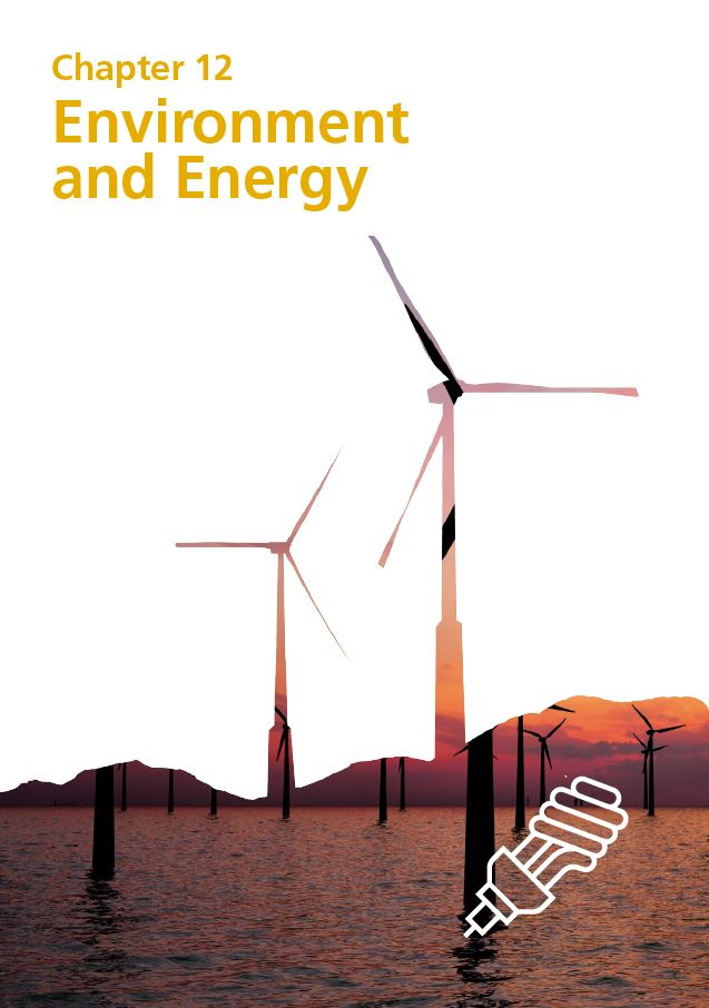 Report cover IE 2020 - Chapter 12