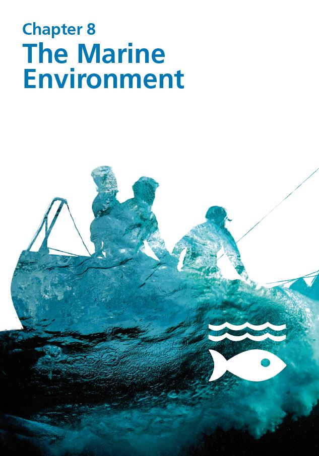 Report cover IE 2020 - Chapter 8