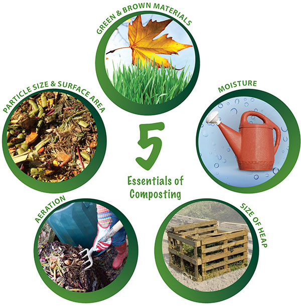 Image showing the 5 essentials of composting